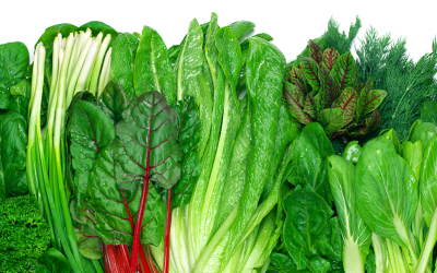 7 Foods That Will Keep Your Digestive System Healthy